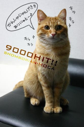 9000HIT!