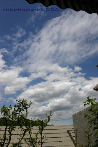 今日は晴れ。