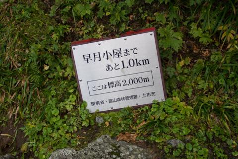 OM-D E-M5 & M.ZUIKO DIGITAL ED 12-50mm F3.5-6.3 EZ