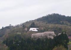 桜色のラブレター
