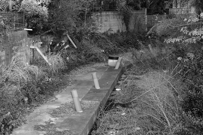 2_river20110227.jpg