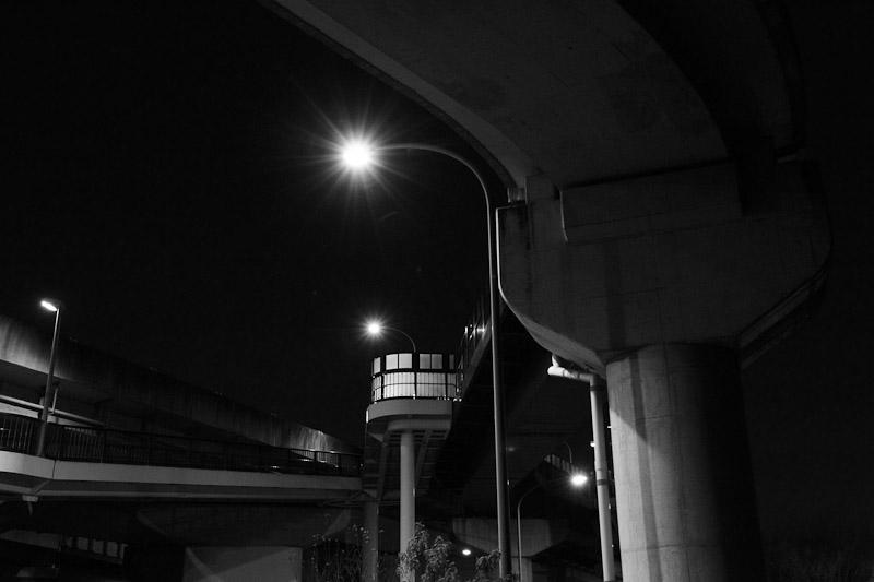 3_night_vision16.jpg