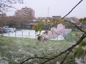 tokyorikisyau-yukigeshiki+018_convert_20100423151537.jpg