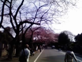 10-03-27_004.jpg
