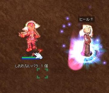2009,11,24しおバラ