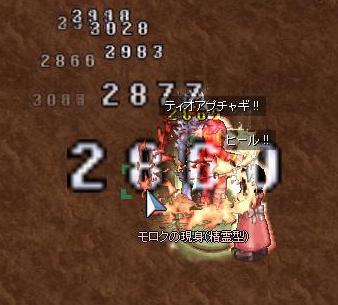 2009,11,27たまちゃんと狭間