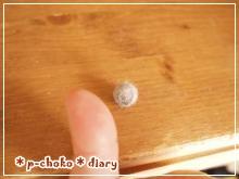 ニャンコ玉親指と比較その1