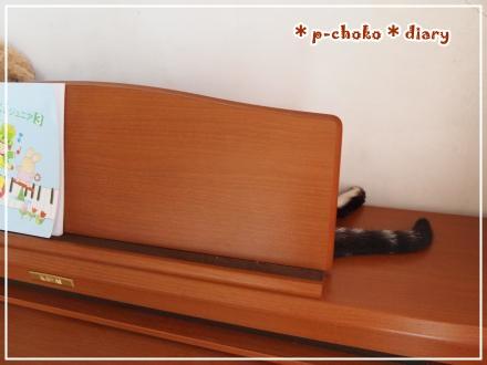 チョコピアノの後ろで寝る