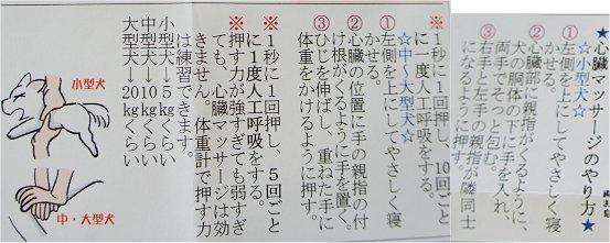 2011061303.jpg