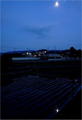 2011061307.jpg