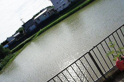 2011062401.jpg