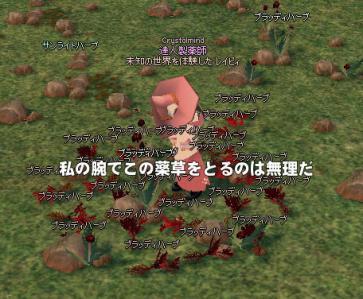 mabinogi_2013_09_07_002.jpg