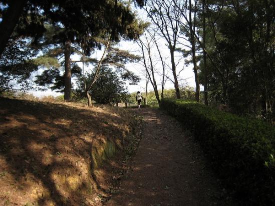 2010/03/22公渕森林公園入り口の坂