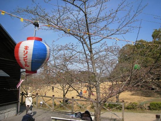 2010/03/22公渕森林公園広場