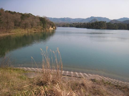 2010/03/22公渕池3