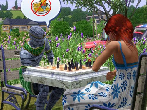 100520hana-chess.jpg