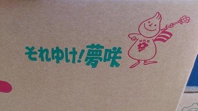 yumesaki.jpg