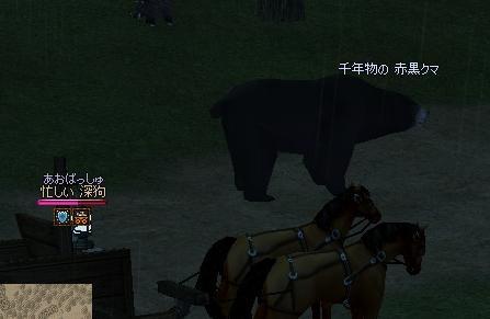 ブログ用千年赤黒クマ