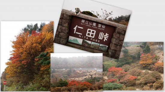 2010-11-08_convert_20101118154356.jpg