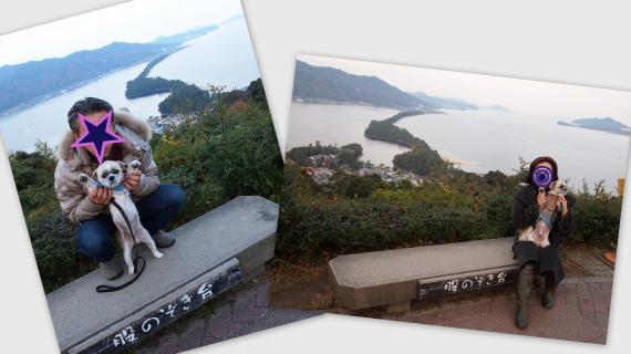 2010-12-022_convert_20101211153936.jpg