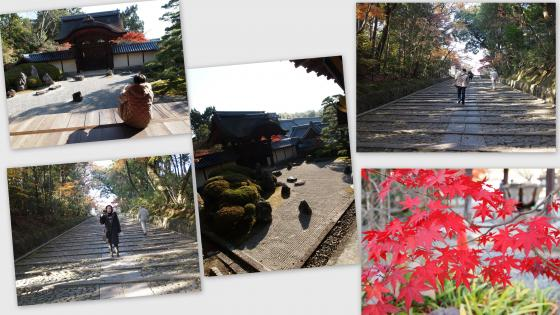 2010-12-026_convert_20101208011905.jpg