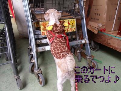 繝・ず繧ォ繝。+1229_convert_20100128201104