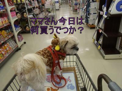 繝・ず繧ォ繝。+1230_convert_20100128201247