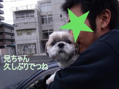 繝・ず繧ォ繝。+1340_convert_20100211214843