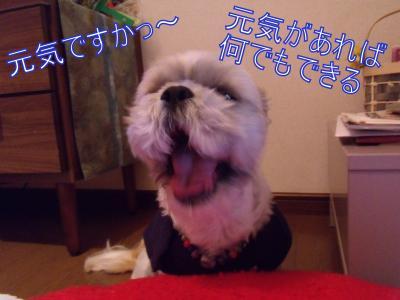 縺・・縺浩convert_20100218014356