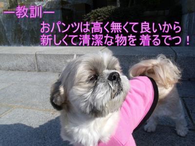 繝・ず繧ォ繝。+017_convert_20100305014246