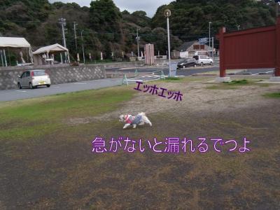 繝・ず繧ォ繝。+131_convert_20100311233253