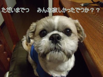 縺斐″縺祇convert_20100401005912