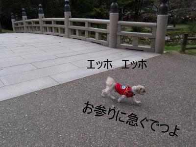 繝・ず繧ォ繝。+308_convert_20100402030946