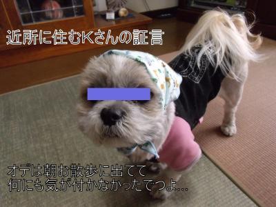 繝・ず繧ォ繝。+572_convert_20100407170108