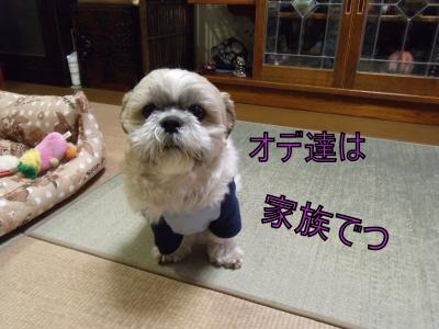 繝・ず繧ォ繝。+200_convert_20100413020024