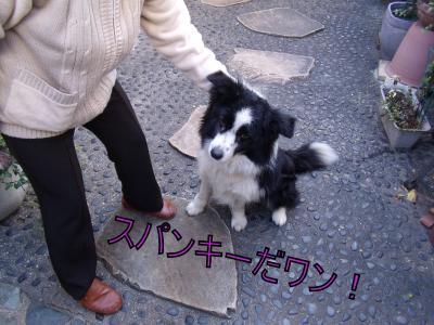 縺吶・繧薙″繝シ_convert_20100413020335