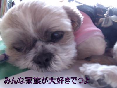 繝・ず繧ォ繝。+560_convert_20100413024457