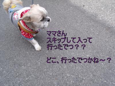 繝・ず繧ォ繝。+494_convert_20100412011233