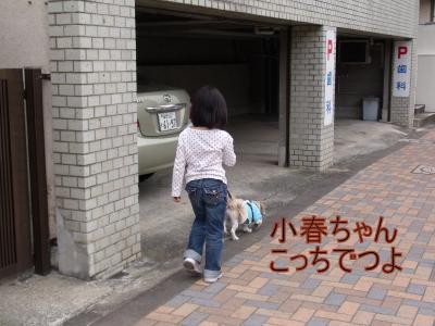 繝・ず繧ォ繝。+582_convert_20100420230836