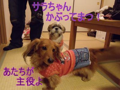 繝・ず繧ォ繝。+627_convert_20100426012347