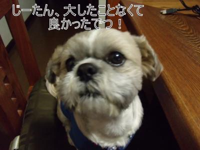 繝・ず繧ォ繝。+264_convert_20100427013355