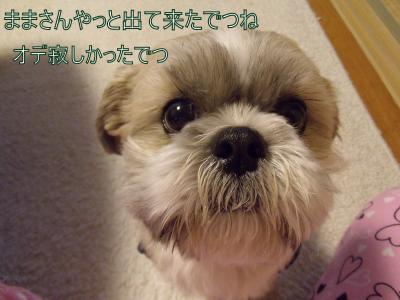 繝・ず繧ォ繝。+657_convert_20100505221841