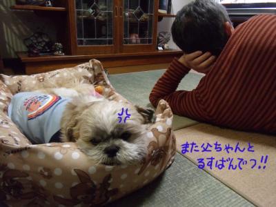 繝・ず繧ォ繝。+195_convert_20100324021411