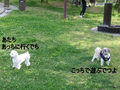 繝・ず繧ォ繝。+732_convert_20100511020421