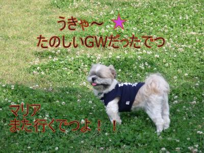 繝・ず繧ォ繝。+736_convert_20100511020856