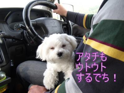 繝・ず繧ォ繝。+746_convert_20100511021117
