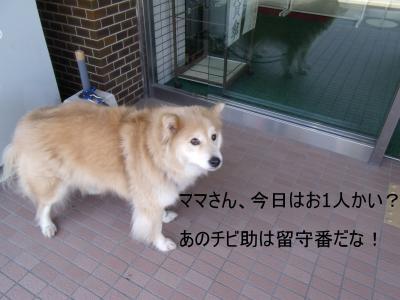 繝・ず繧ォ繝。+765_convert_20100515010736