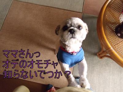 繝・ず繧ォ繝。+241_convert_20100520031353