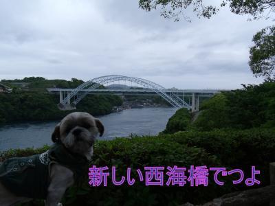 繝・ず繧ォ繝。+782_convert_20100520124839