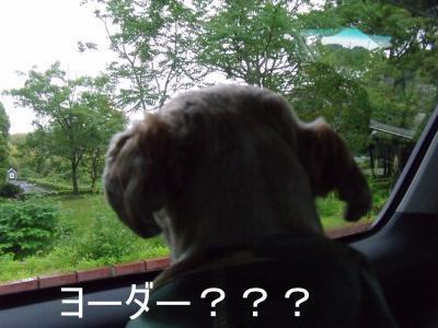 繝・ず繧ォ繝。+794_convert_20100523200232